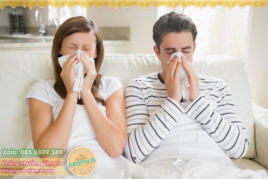 Giải pháp cho viêm xoang, viêm mũi dị ứng, chảy nước mũi, hắt hơi liên tục