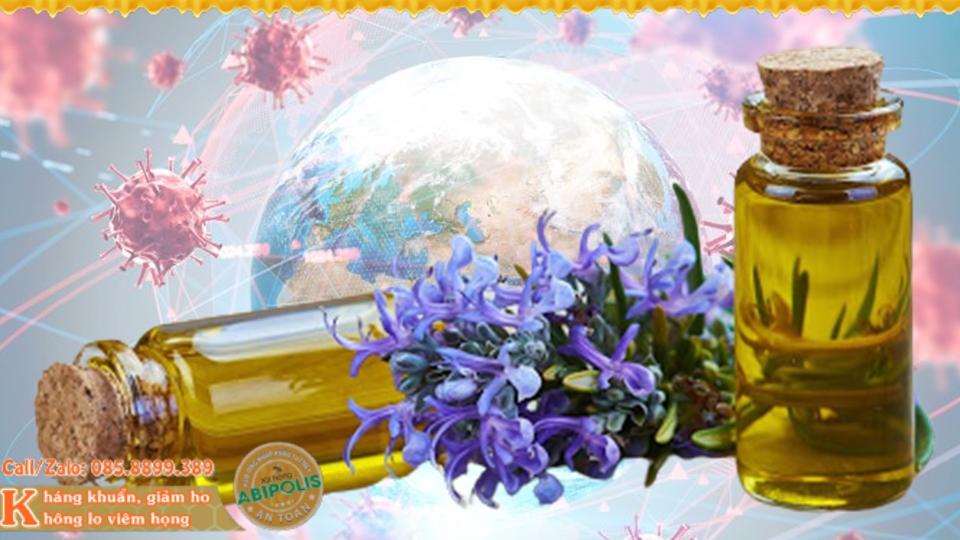 Sáng tỏ tinh dầu phòng chống dịch viêm đường hô hấp cấp